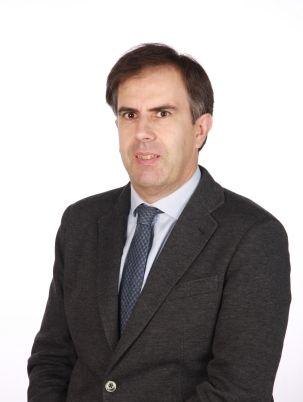 Fernando Villaverde Parga - Consultor